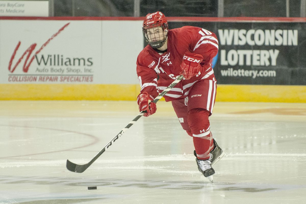 Image result for wisconsin hockey 2018