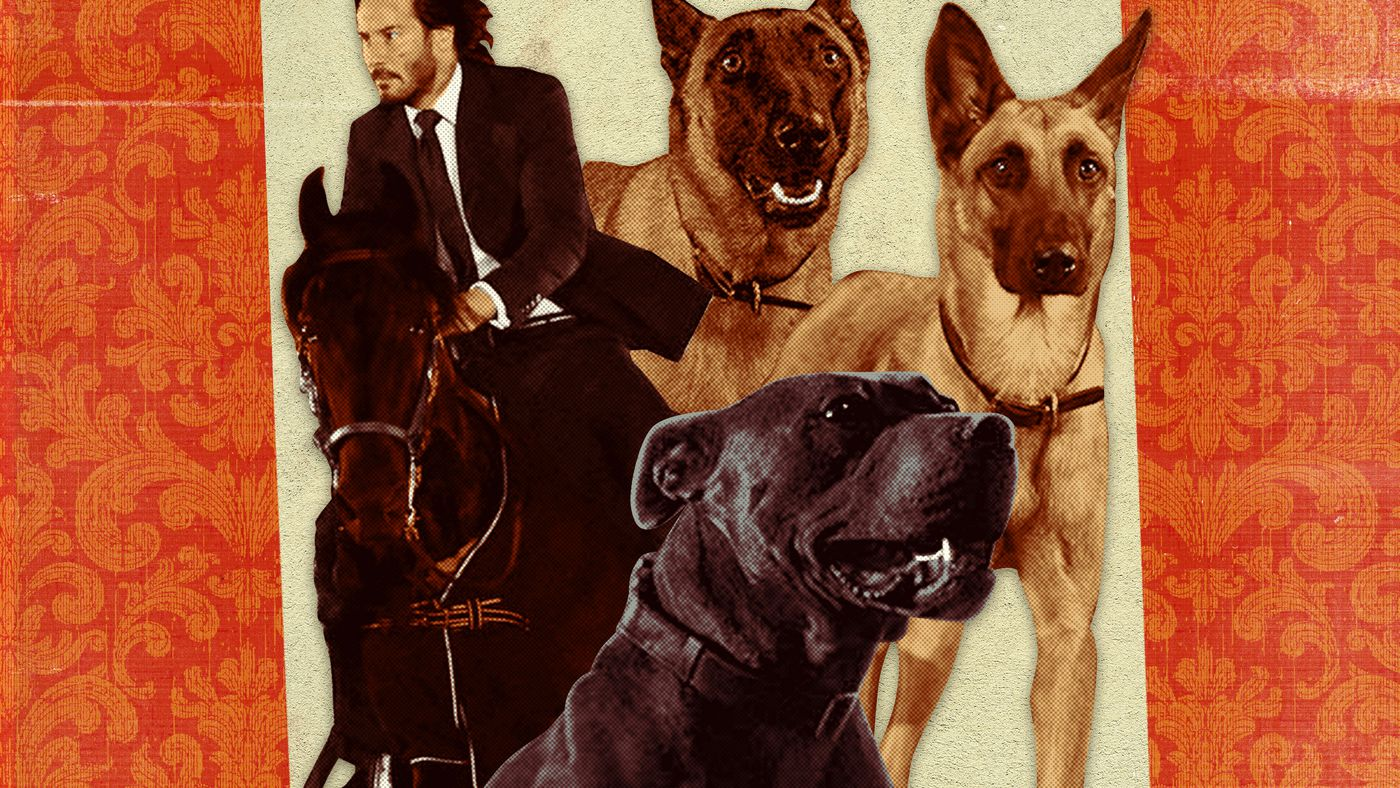 How 'John Wick: Chapter 3—Parabellum' Turned Animals Into Action Stars