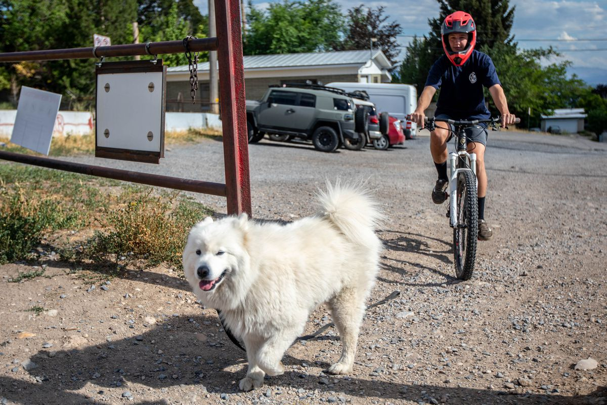 Carter Wessman, left, and Zoumie enter a section of the Bonneville Shoreline Trail in Salt Lake City on Thursday, July 1, 2021.