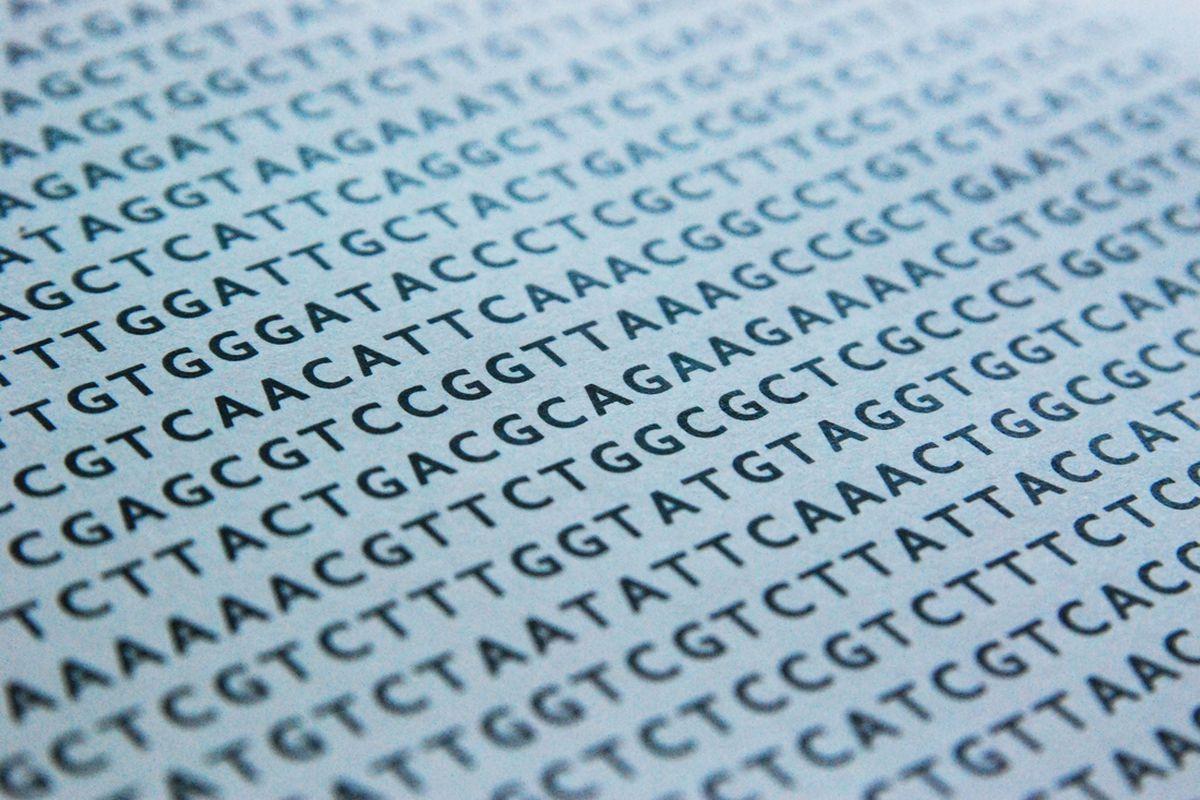"via <a href=""http://blog.oncofertility.northwestern.edu/wp-content/uploads/2010/07/DNA-sequence.jpg"">blog.oncofertility.northwestern.edu</a>"