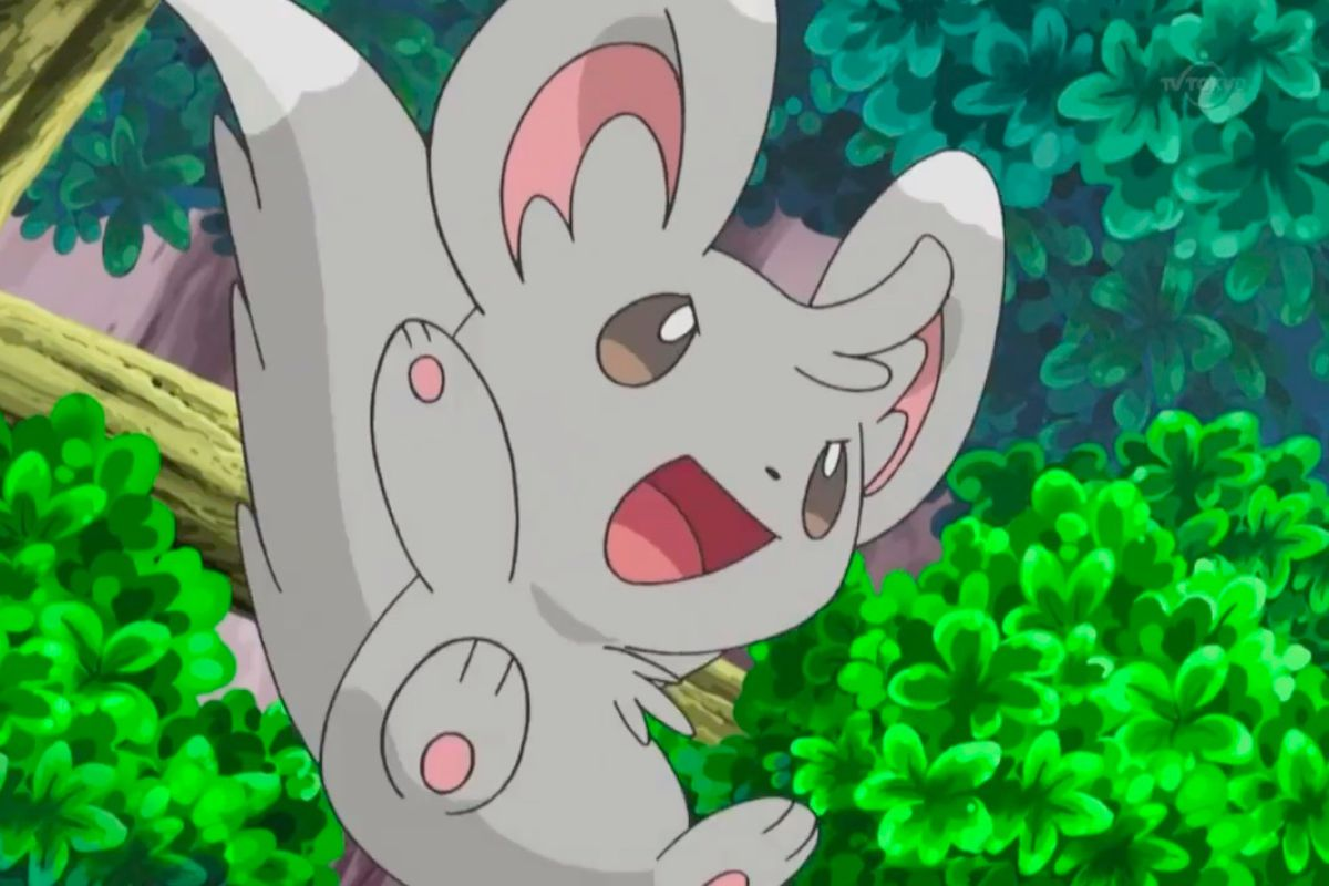A still from the Pokémon anime featuring Minccino leaping from a tree branch