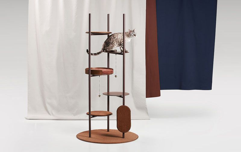 Cat on tower