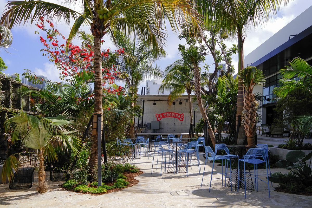 Patio garden with blue chairs, palm trees, and bright flowers
