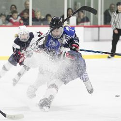 Team NWHL forward Erika Lawler goes over the top of a Team USA player.