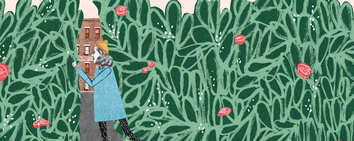 An illustration of a woman peering through a hedge to the home hidden behind it.