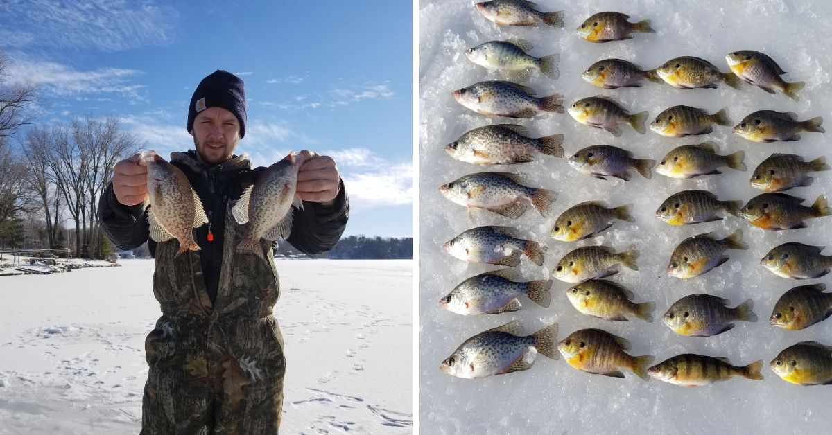 Crappie, iffy ice, so-so perch, holiday: Chicago fishing