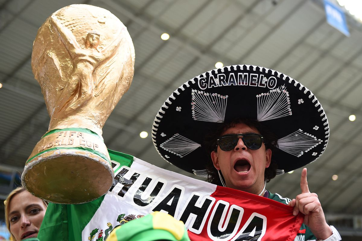 A Mexican fan in Fortaleza, Brazil, during the Brazil-Mexico match.
