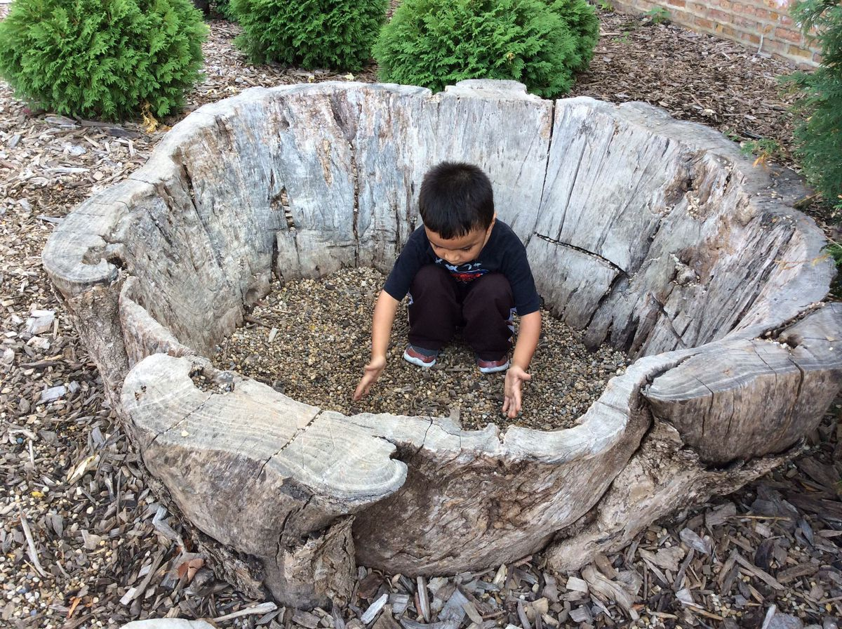 A nature playground has few man-made materials.