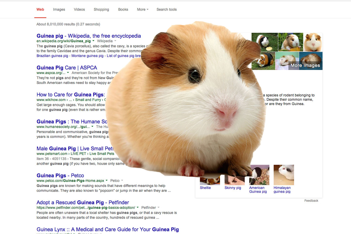 "Re/code on TV (and Radio): Tablet Market ""Crashing"" and Google Wants Guinea Pigs"
