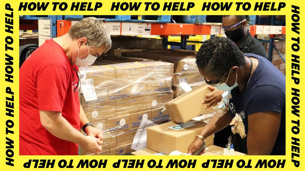 volunteers handling boxes
