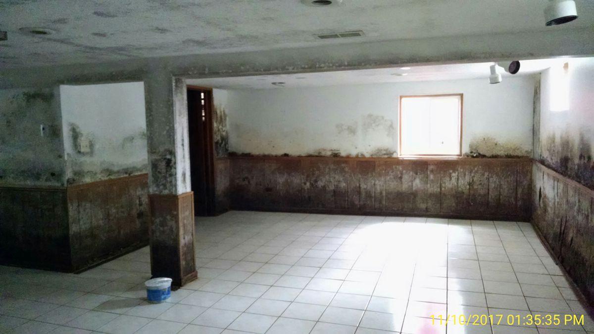 The basement before Natasha Cornog purchased the home.