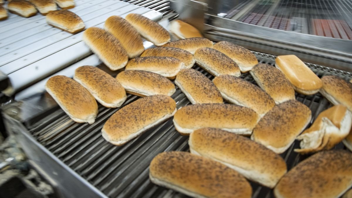 S. Rosen's hot dog buns being made at Alpha Baking Company.   Brian Rich Sun/Times