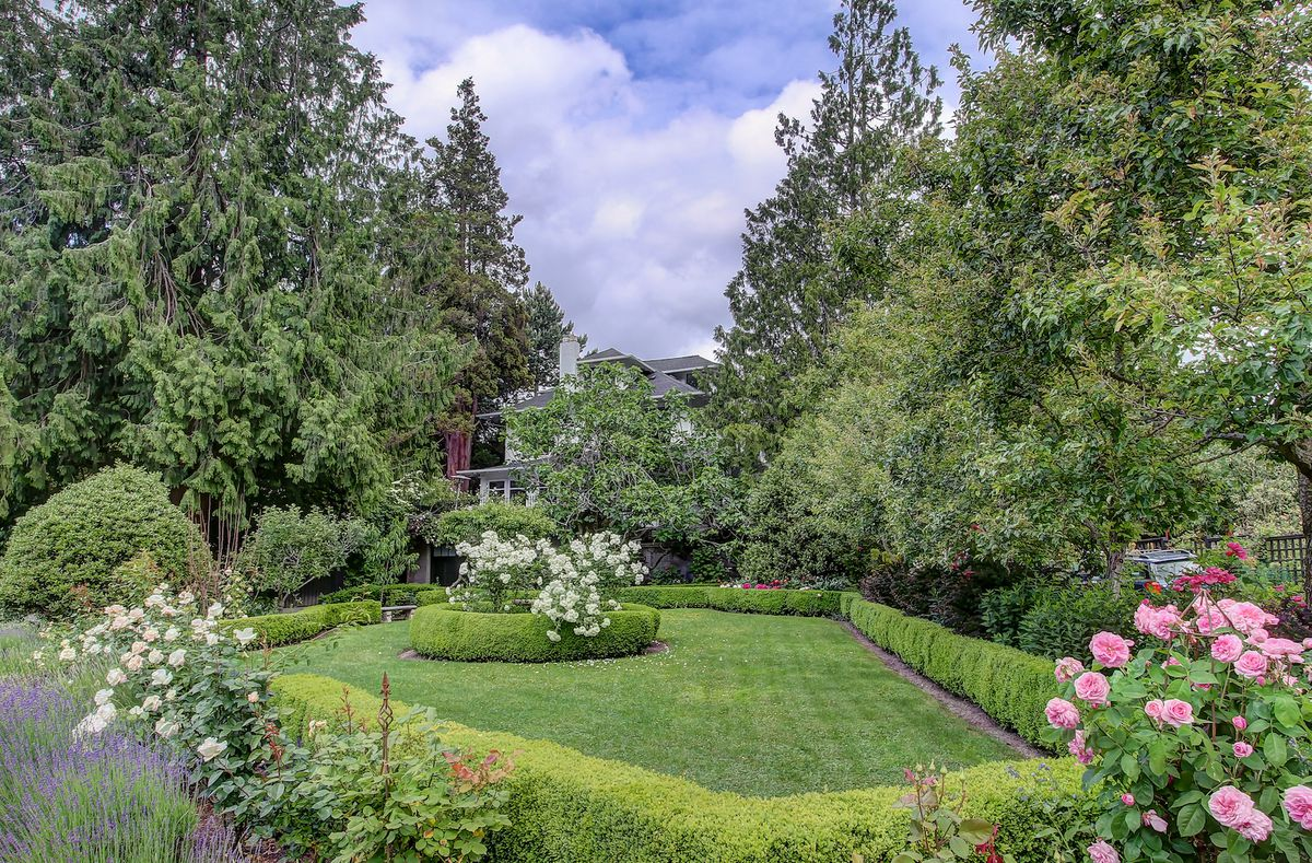 A lawn lined with boxwoods in an irregular but picturesque polygon shape
