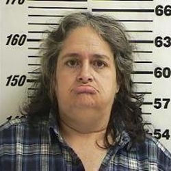 Meloney Toone Selleneit, 53, of Centerville, is charged with criminal solicitation and possession of a dangerous weapon by a restricted person in connection with the shooting of a neighbor. Her husband, Michael Selleneit, pleaded guilty to the shooting.