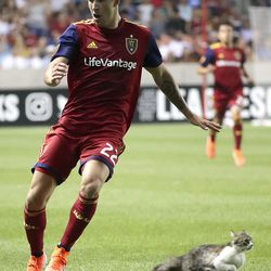 A cat runs past Real Salt Lake defender Aaron Herrera (22) during the last minutes of a Leagues Cup soccer match against the UANL Tigres at Rio Tinto Stadium in Sandy on Wednesday, July 24, 2019. Real Salt Lake lost 1-0.