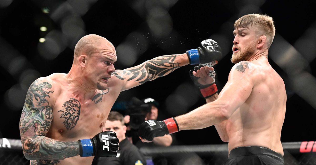 in a single moment  alexander gustafsson and anthony smith