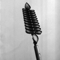 <strong>1984- Spirit Spear at Doak Campbell stadium</strong>