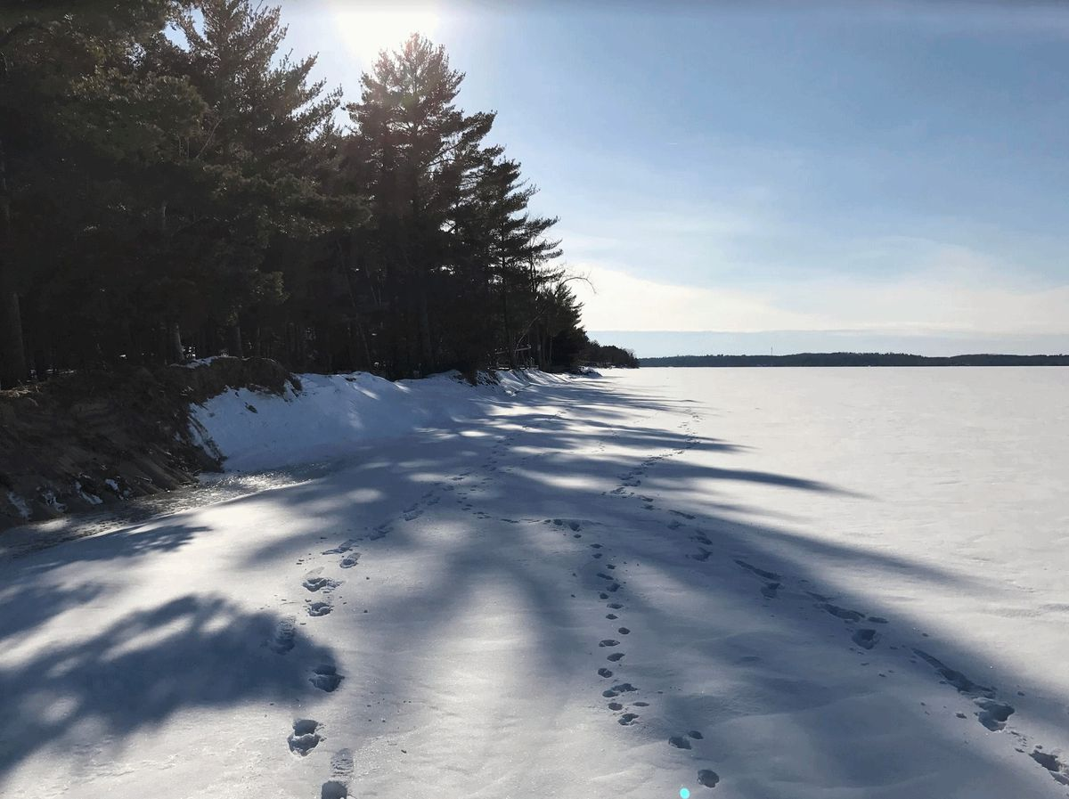 Thaw, Potentially Plowable Snow – Then Colder (But Not Too Cold)
