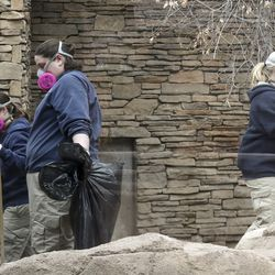 Cat keepers Kelsey Middleton, left, Michelle Olandese and Christy Ruff wear masks and gloves as they clean an enclosure belonging to Nikolai, a Amur tiger, at Utah'sHogle Zoo in Salt Lake City on Monday, April 6, 2020. The keepers are wearing new protective gear after it was discovered a tiger at the Bronx Zoo in New York tested positive for COVID-19.