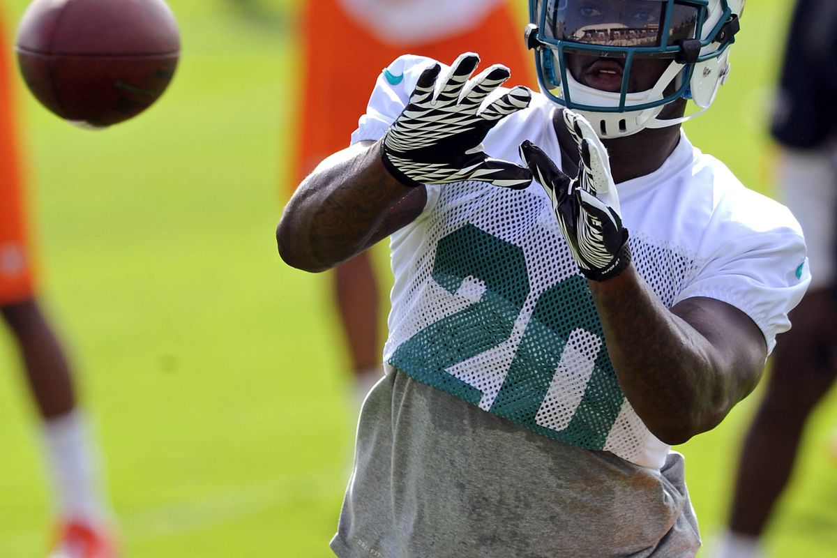 July 28 2012; Davie, FL, USA; Miami Dolphins defensive back Reshad Jones (20) makes a catch during practice drills at the Dolphins training facility. Mandatory Credit: Steve Mitchell-US PRESSWIRE