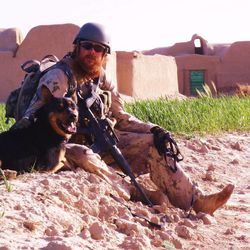 John Logie works with his K9 partner Balto in Afganistan. In May 2010 Logie was in Afghanistan working as a contractor and was injured by an IED. Balto pulled him away from the primary IED which would of killed him.