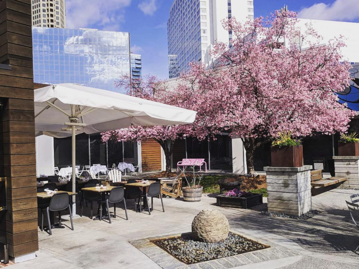 An outdoor dining area. There are tables, chairs, and white umbrellas. There is a tree with pink blossoms.