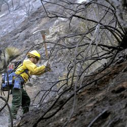 Firefighter Romero Mercado checks for hotspots in the Angeles National Forest Wednesday Sept. 5, 2012 near Los Angeles. Fire crews are getting help from rain in battling a 3,800-acre fire in the San Gabriel Mountains northeast of Los Angeles.