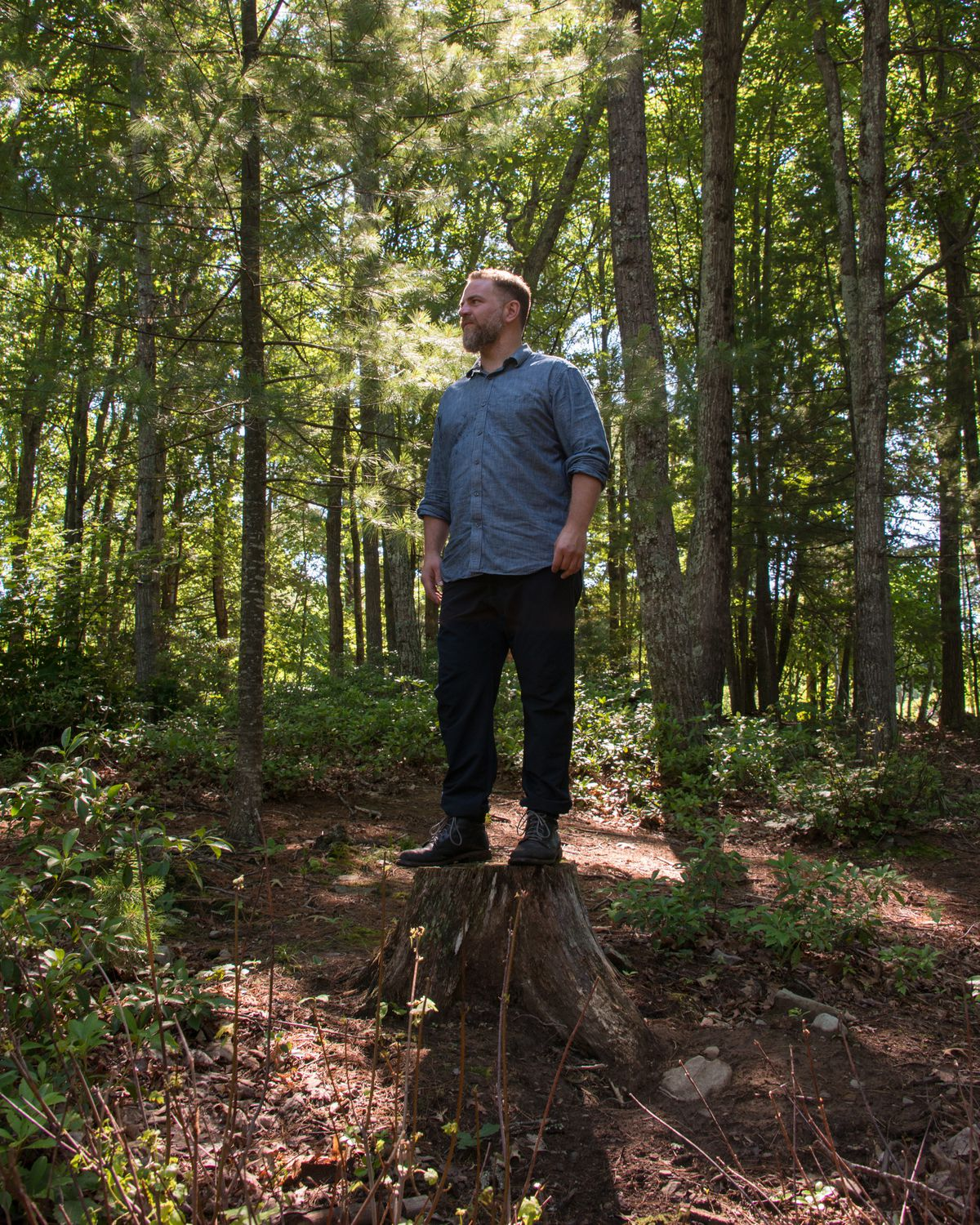 The owner stands on a tree stump in the woods.