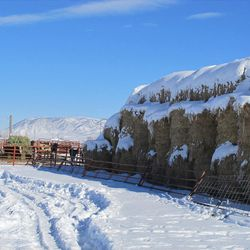 The extreme cold in winter keeps the hay well-preserved in Woodruff.
