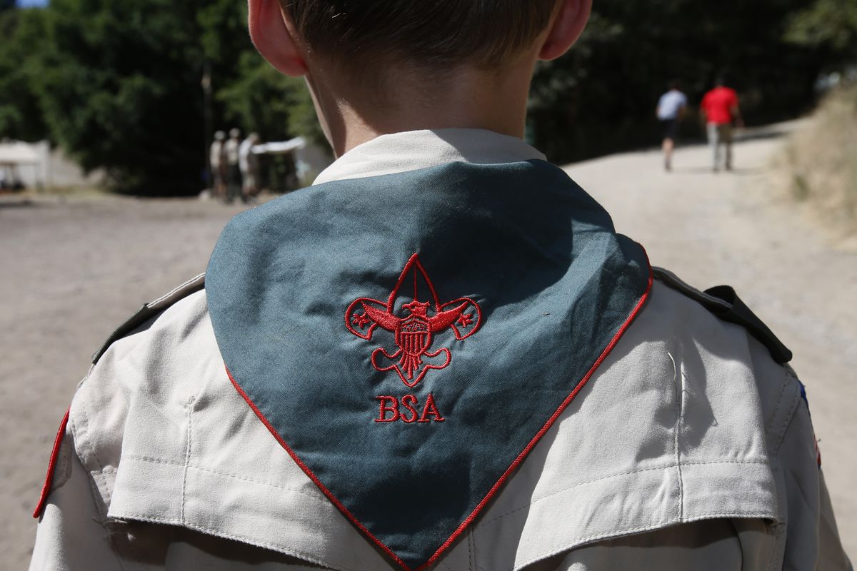 The back and shoulders of a boy in a Boy Scout uniform and scarf.