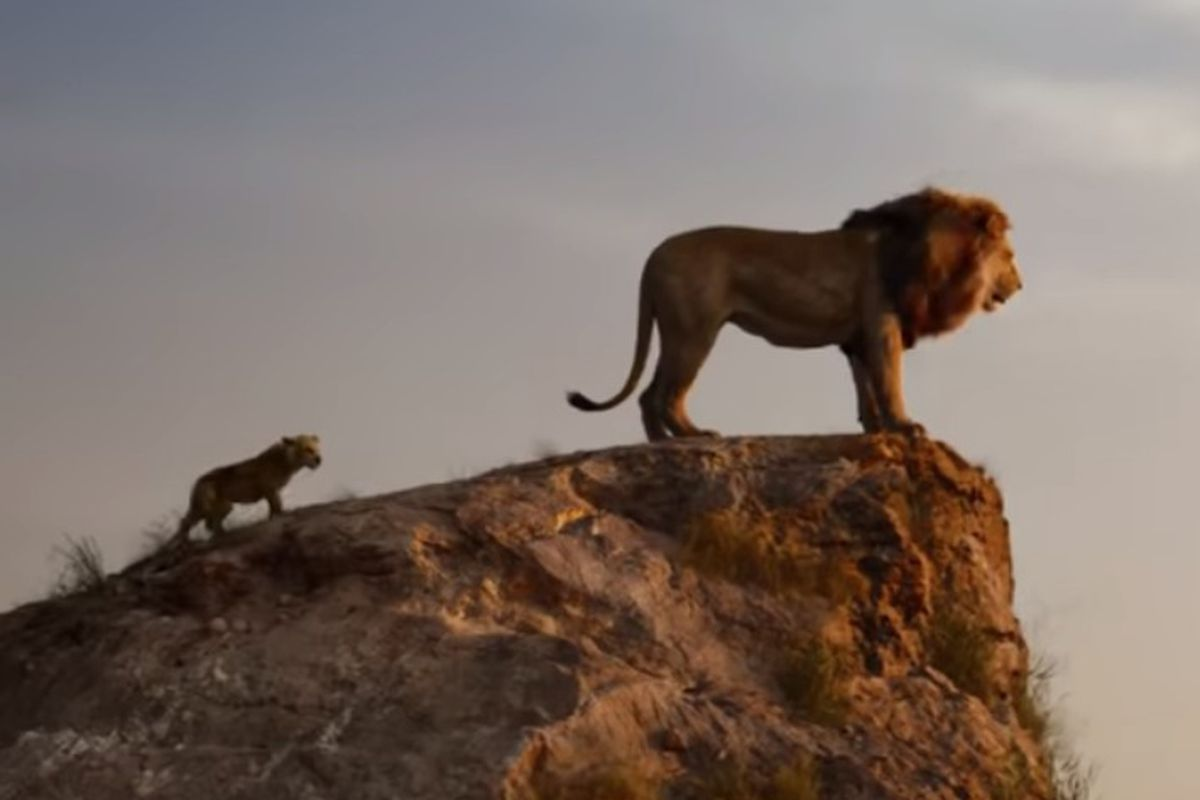 """A shining new trailer has tiptoed itself nearer, and now we have our first real look at Disney's """"The Lion King"""" remake."""