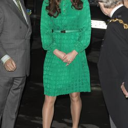 The Duchess wears Mulberry dress for the official opening of The Natural History Museums's Treasures Gallery on November 27th, 2012.