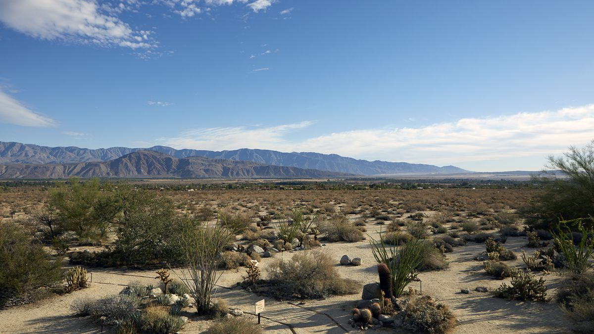 View of the desert landscape in Borrego Springs.