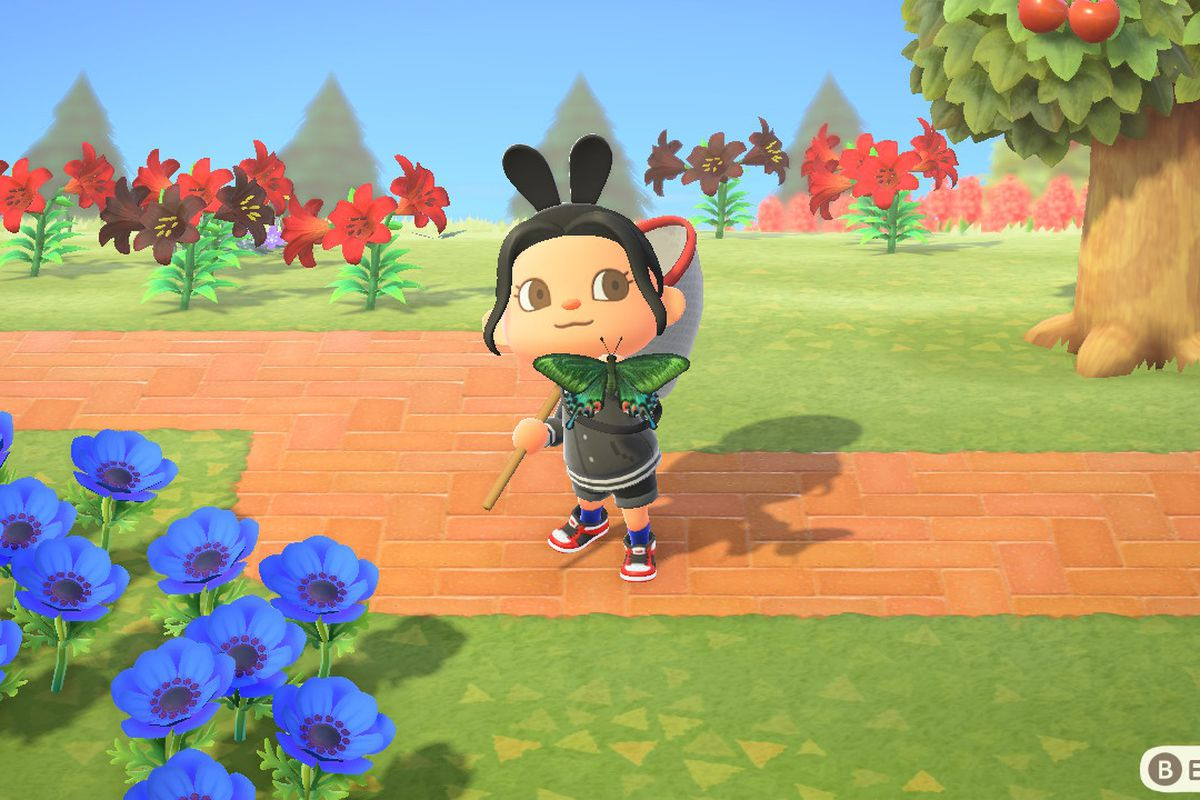 An Animal Crossing character holds up a butterfly