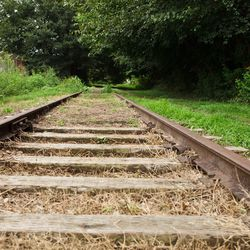 Here, rails still lie along the cleared trail.