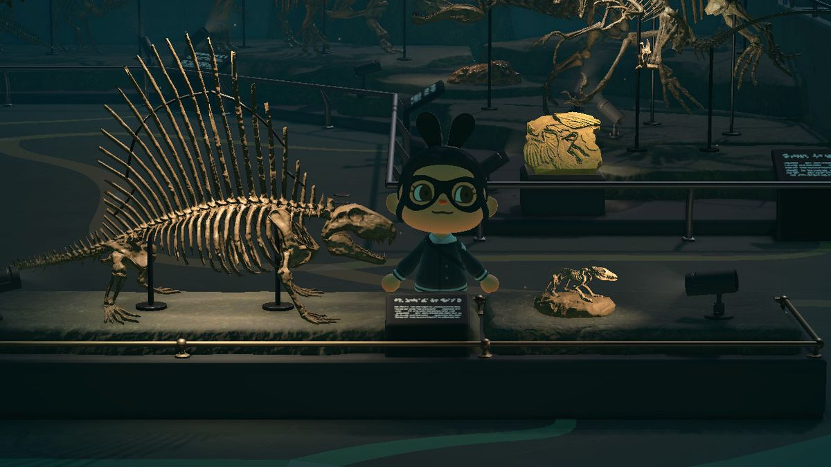 Early critters in Animal Crossing New Horizons musuem