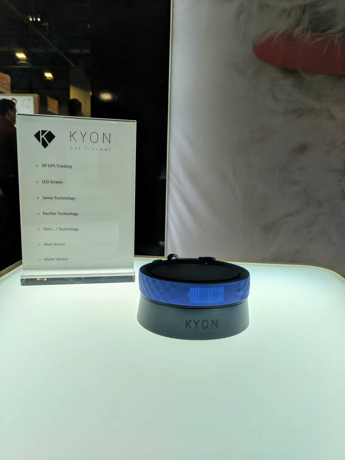 Kyon's 'Up'-inspired collar with an LED screen. (Alyssa Bereznak)