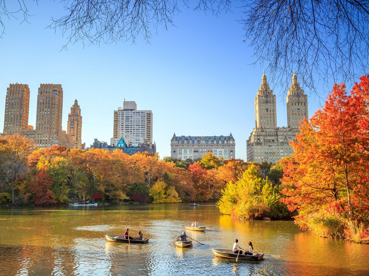Fall Colors 2019 Where To See Fall Foliage In New York City Curbed Ny