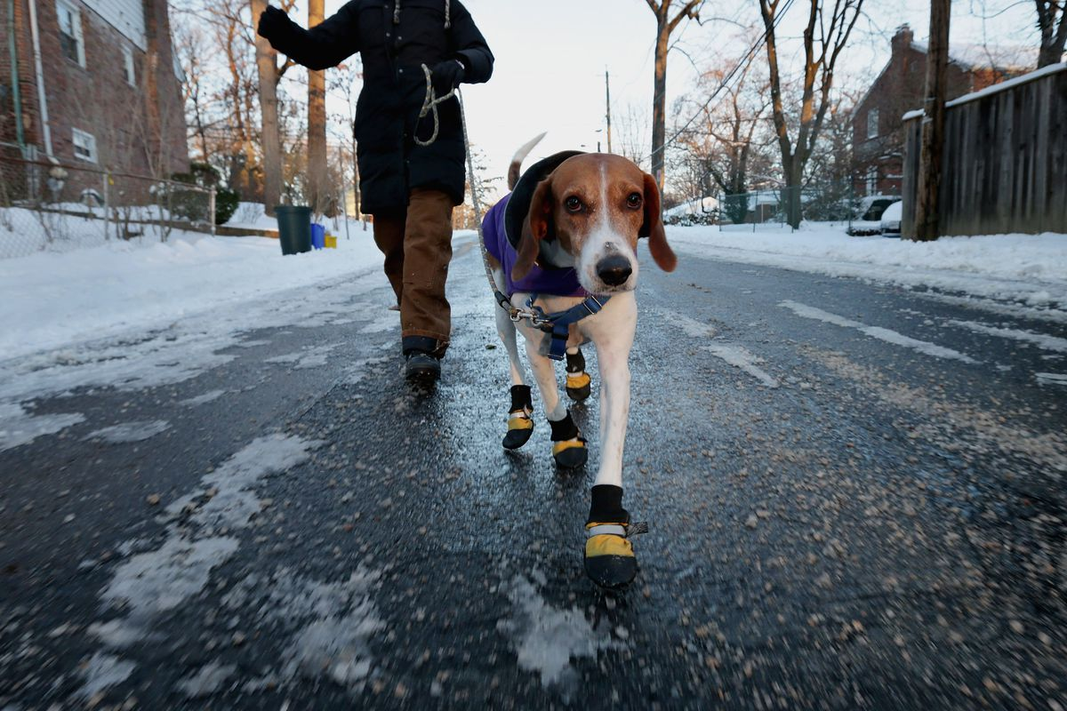Heavy Snow And Frigid Temperatures Settle Over Washington DC