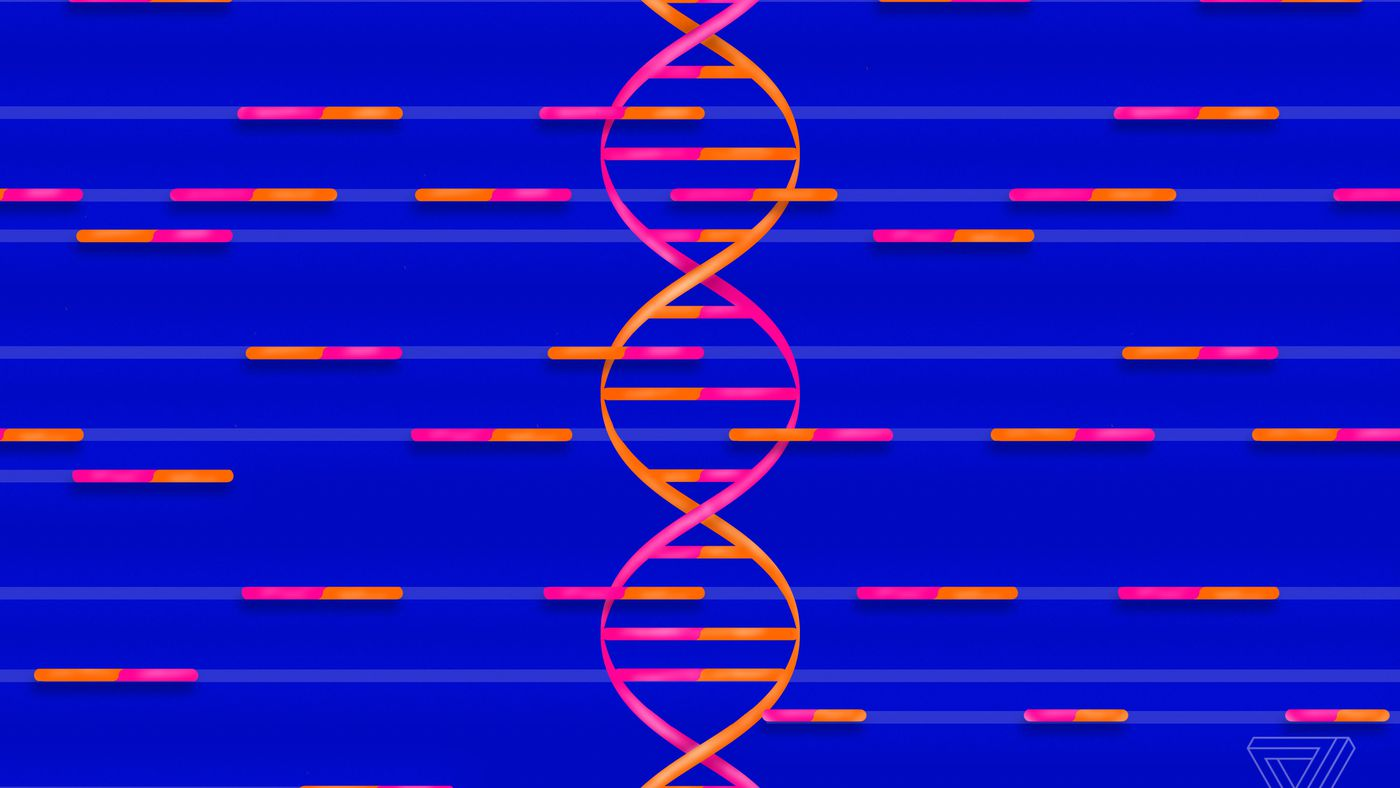 Why A Dna Data Breach Is Much Worse Than Credit Card Leak The Verge Symptoms Of Bad Circuit Breaker Ehow Uk