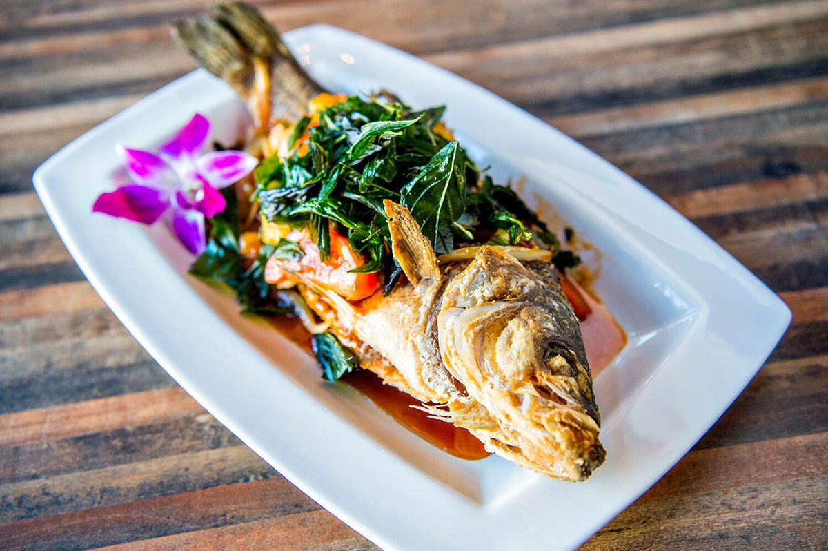 A view of the Deep Fried Whole Stripped Bass, a whole bass adorned with basil in a red sauce
