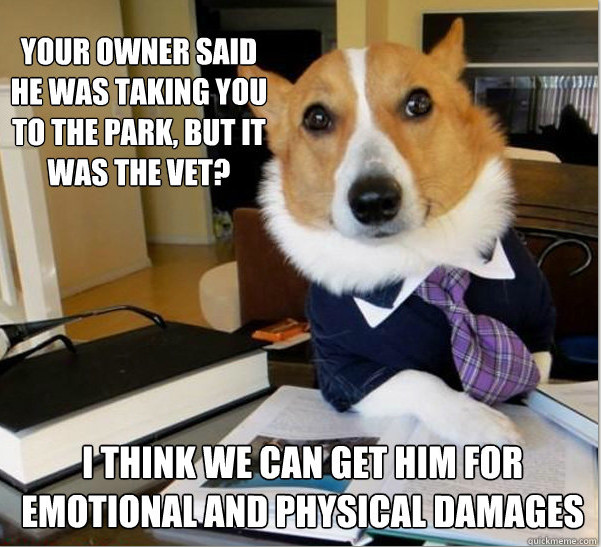 The 14 Funniest Examples of the Lawyer Dog Meme - Funny Or Die
