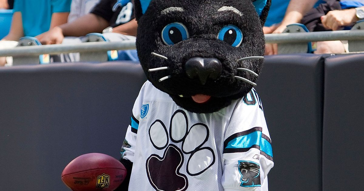 03106b0fc Register for the Carolina Panthers  Weekend Warrior Flag Football  Tournament today! - Cat Scratch Reader