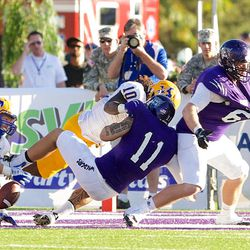 Weber State quarterback Mike Hoke fumbles the ball just short of the goal line, and it is recovered by McNeese Setate linebacker Bo Brown, during the second quarter of an NCAA college football game Saturday, Sept. 15, 2012, in Ogden, Utah. (AP Photo/Standard-Examiner, Dennis Montgomery)