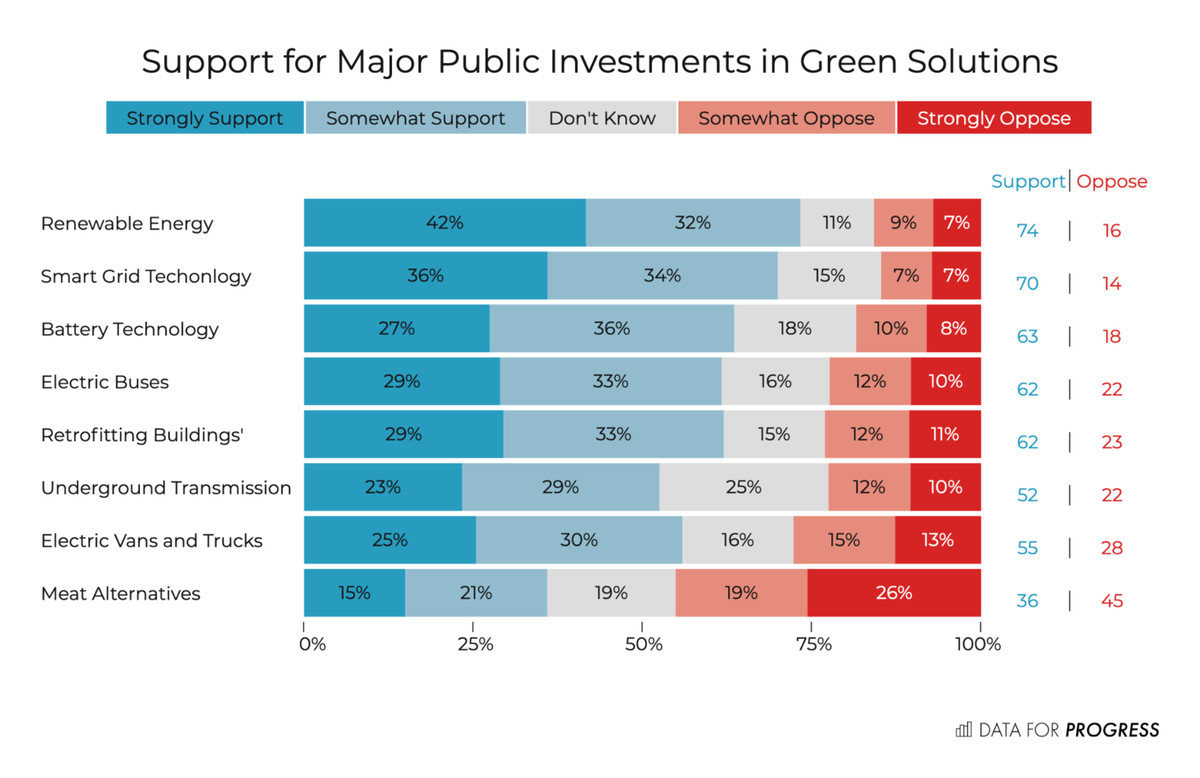 public supports green investment