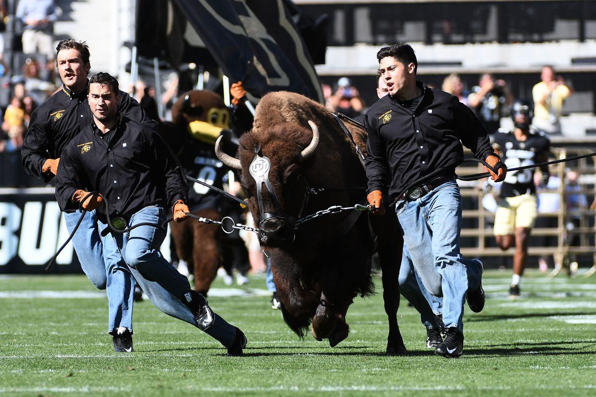 NCAA Football: Idaho State at Colorado