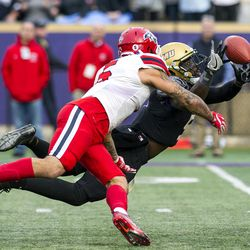 James Madison safety Raven Greene (5) tries to catch the ball after Stony Brook wide receiver Donavin Washington (5) missed a catch during the first quarter of an FCS playoff NCAA college football game Saturday, Dec. 2, 2017, in Harrisonburg, Va. (Stephen Swofford/Daily News-Record via AP)