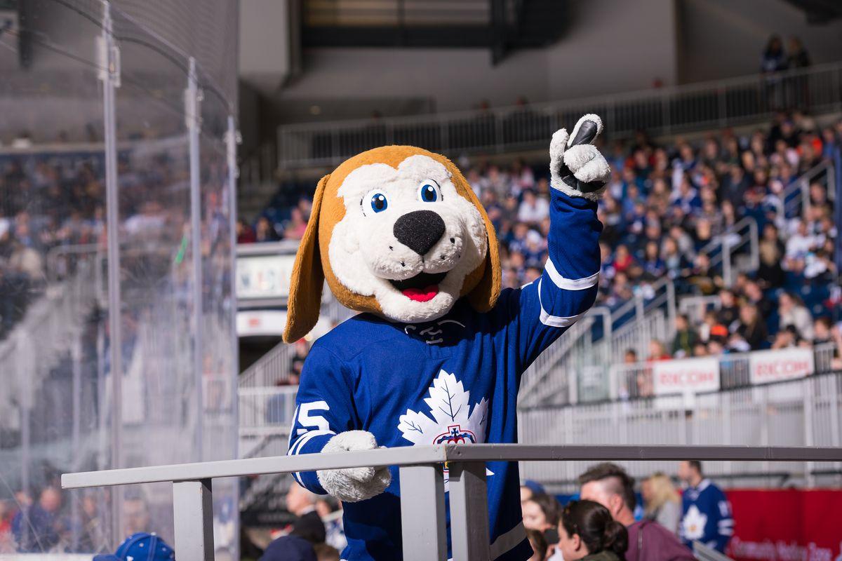 Toronto Marlies mascot Duke