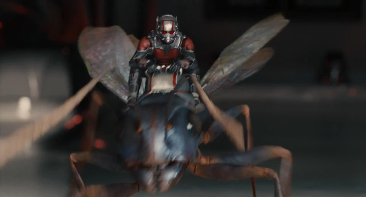 ant-man rides an ant