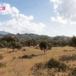 The Arid Hills biome.